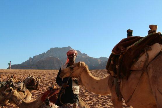 camello wadi rum