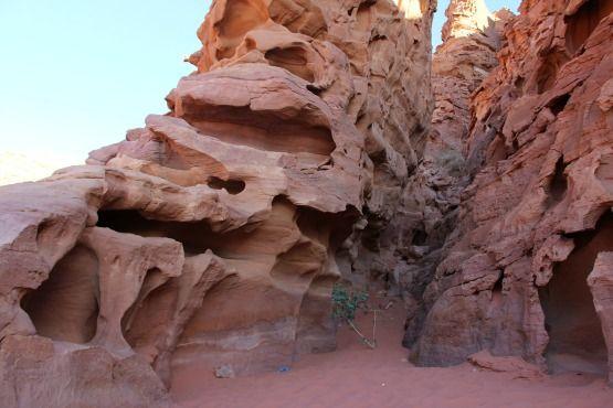 desierto rojo